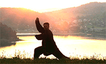 Picture of a person doing Tai Ji.